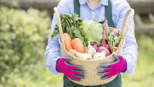 杉並区方南エリアにお住まいの方向けに野菜販売はじめます。